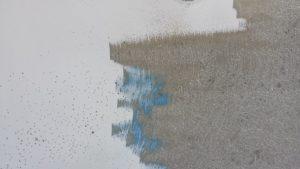 black-spot-removal-pool-repairs-perth
